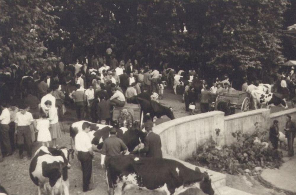 Feria ganadera en La Ventilla, Solares.